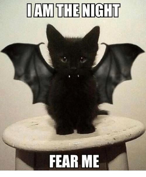 dan-the-night-fear-me-4848857