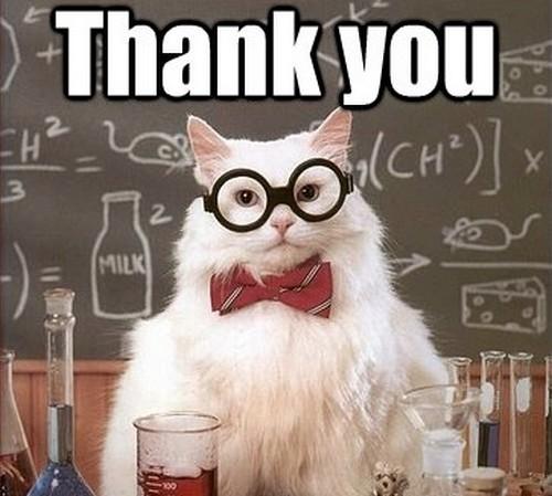 chem_cat_thank_you_meme1